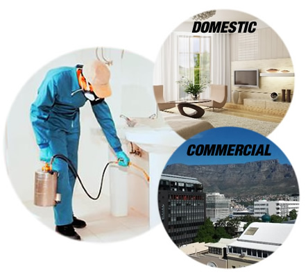 Pest control and fumigation in cape town servicing both domestic houses and commercial businesses